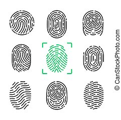 Collection of Fingerprints on Vector Illustration