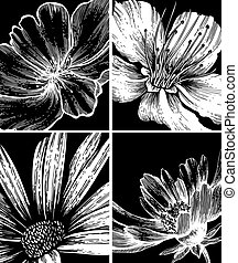 Collection of floral backgrounds, hand drawing. Vector illustration.