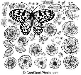Collection of flowers and butterfly