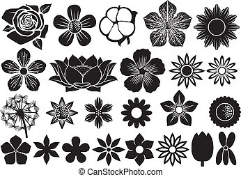 collection of flowers (flower set, lotus flower, dandelion,...