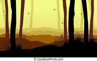 Collection of forest with tree at sunset