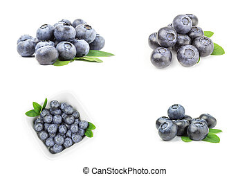 Collection of fresh blueberry - Group of great bilberry