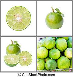 Collection of fresh lime