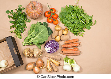 Collection of Fresh Vegetables and a Box Copy Space