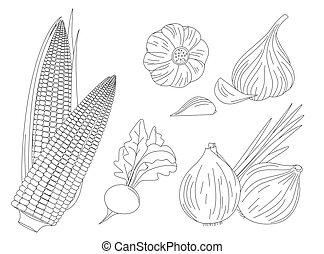 collection of fresh vegetables. onion, corn, radish and garlic f