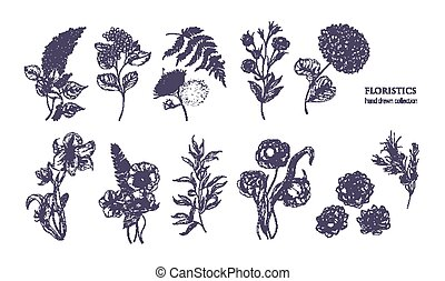 Collection of gorgeous floristic flowers and wild flowering...
