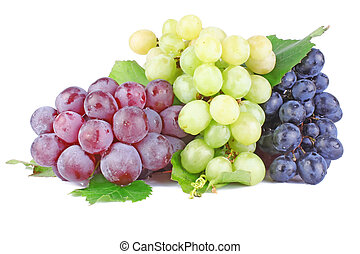 Collection of ripe grape clusters with green leaves isolated on white background