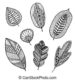 Collection of hand-drawn decorative leaves