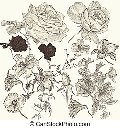 Collection of hand drawn detailed - Collection of high...