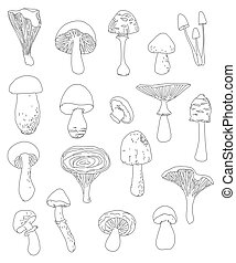 collection of hand-drawn linear mushrooms,