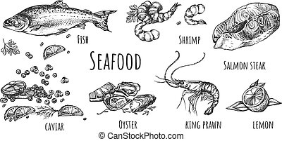 Collection of hand drawn natural food - Vector illustration...