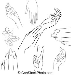 Collection of hands in various gestures, manicure and beauty con