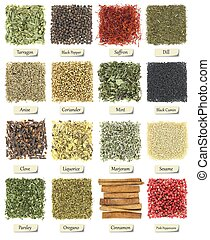 Collection of herbs and spices isolated on white