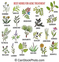 Collection of herbs for acne treatment