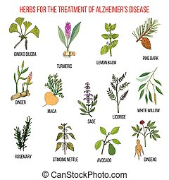 Collection of herbs for Alzheimer disease
