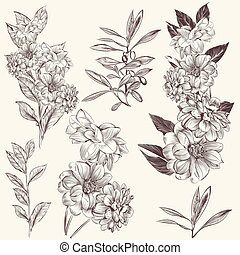 Collection of high detailed hand drawn flowers.eps