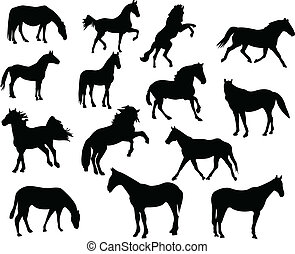 horse silhouettes - Collection of high quality horse...