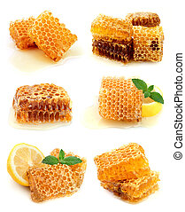 Collection of honeycomb and honey