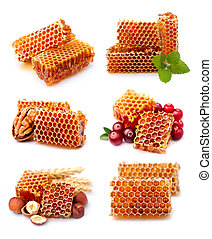 Collection of honeycomb.