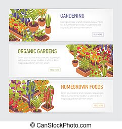 Collection of horizontal web banners with plants growing in ...