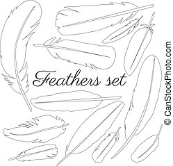 Collection of isolated flat style bird feathers set