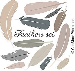 Collection of isolated flat style bird feathers set.