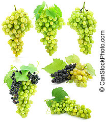 collection of grape clusters with green leafs isolated on white background