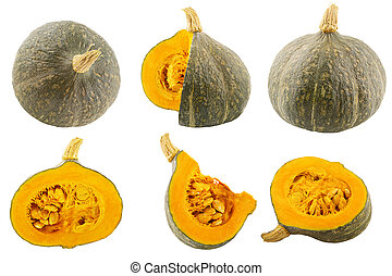 Collection of isolated pumpkins on white background