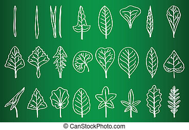 Collection of Leaf Silhouettes on School Board