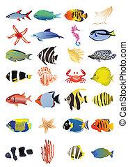 marine animals - Collection of marine animals, vector ...