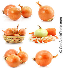 collection of onion vegetable fruits isolated