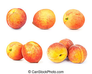 collection of peaches isolated on white background