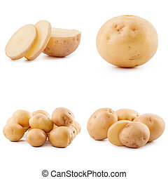 Collection of potato isolated on white background
