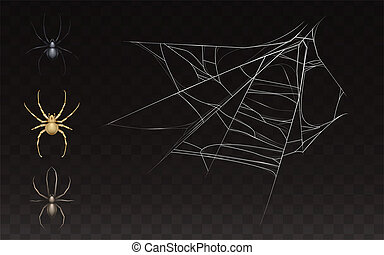 collection of realistic web with spider - collection of ...