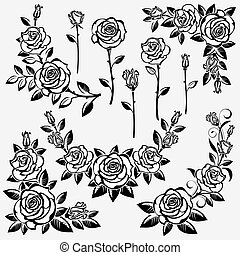 Collection of roses