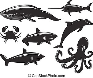 Collection of sea animals isolated on white background.