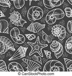 Collection of seashells drawn