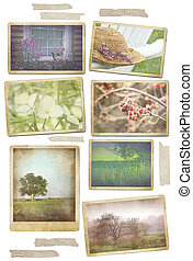 Collection of seasonal photos in vintage frames