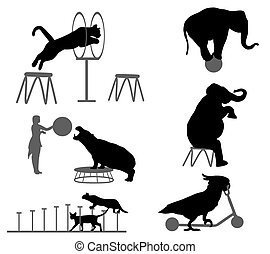 circus show - Collection of silhouettes of animals in circus...