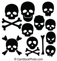 Collection of skulls isolated on white