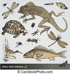 Set of engraved style small wild animals