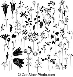Collection of stylized herbs and plants. Black and white...