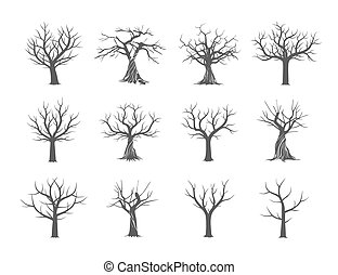 Collection of Trees without leaves. Vector Illustration.