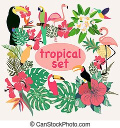 collection of tropical birds, palm leaves and flowers