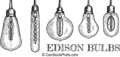 Collection of various shaped hanging edison bulbs - Vector ...