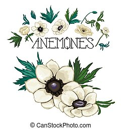 Collection of vector anemones