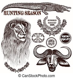 Collection of vector hand drawn sav