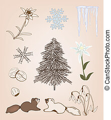 collection of winter elements