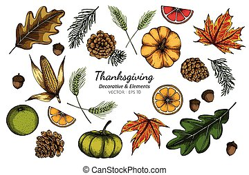 Collection set of thanksgiving decorative flower and leaves drawing illustration.