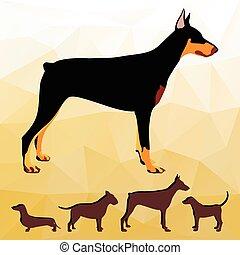 collection., silhuetas, cão, raças
